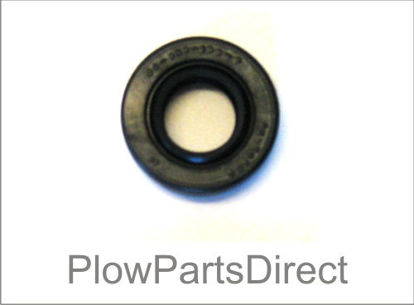 Picture of Snoway pump Seal