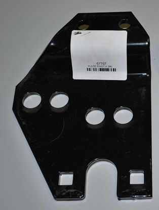 Picture of Western Pivot plate A