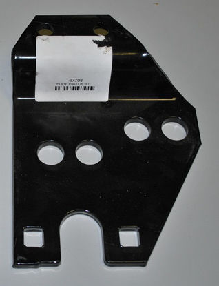 Picture of Western pivot plate B