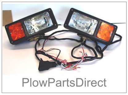 Picture of Western 12 pin lights white