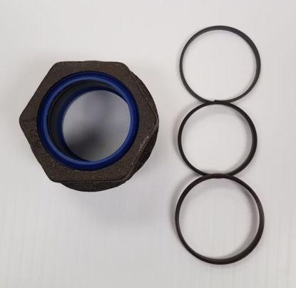 Picture of Western Seal Kit 1 3/4 DA Ram - 44342